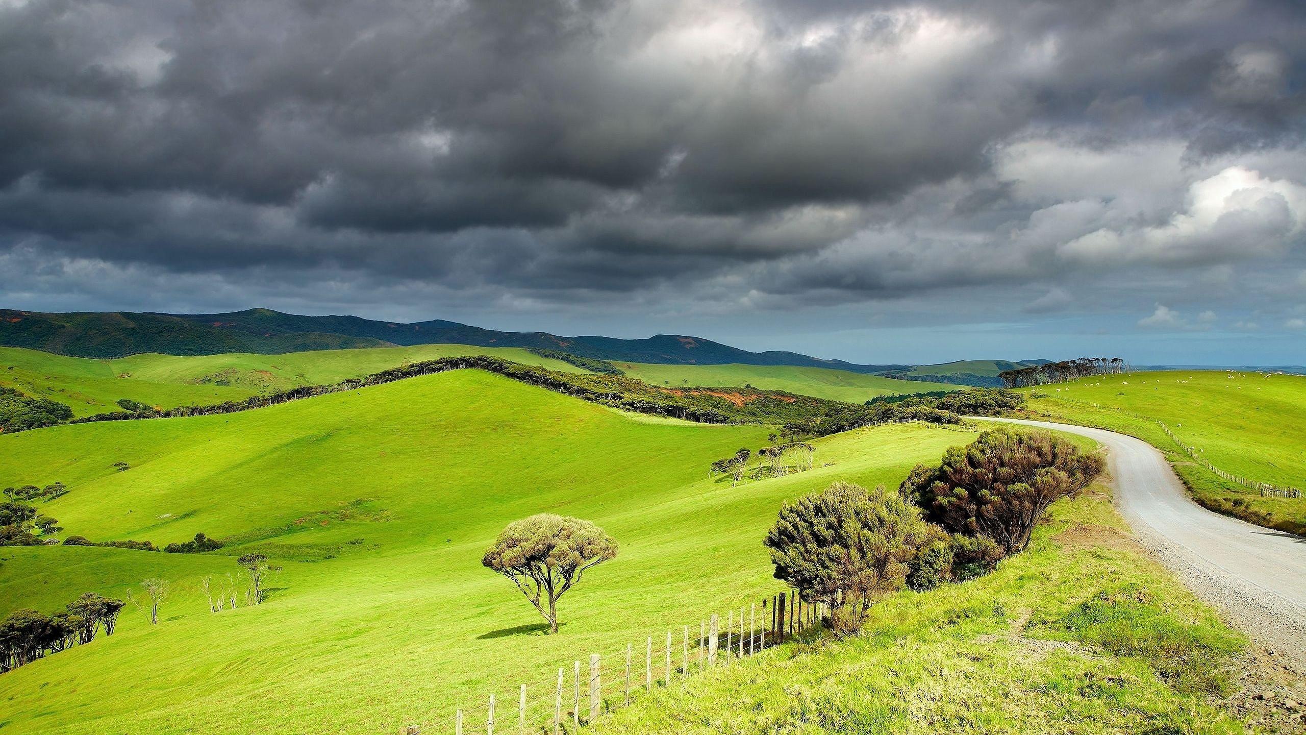 Hills Grassland