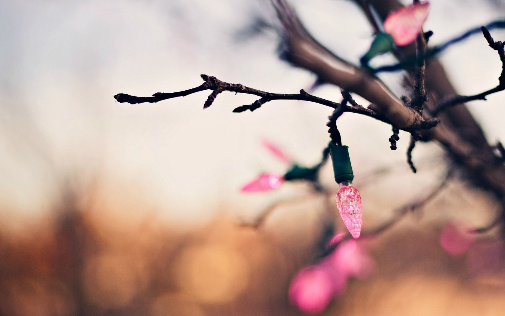 Holiday Tree Branch Garland Lights Pink New Year