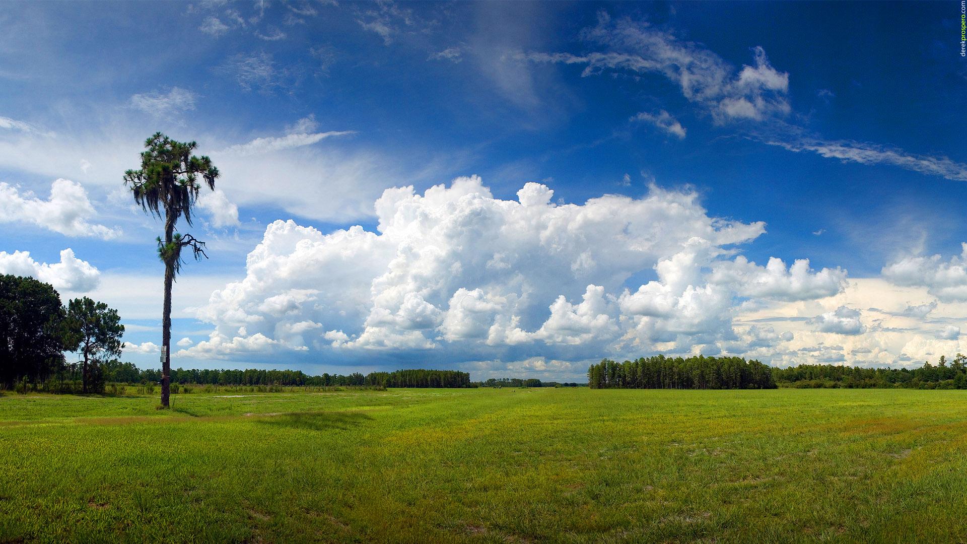 Horizon Landscape
