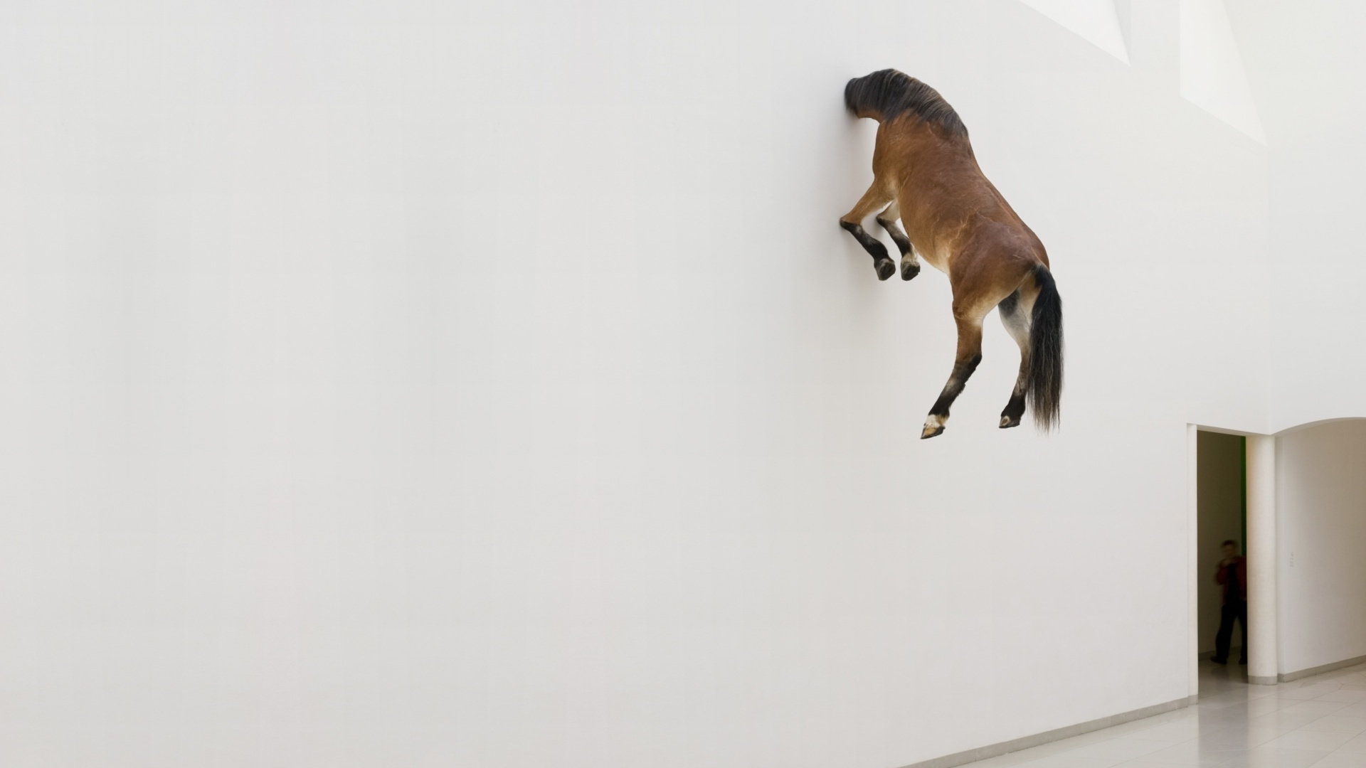 Horse in Wall