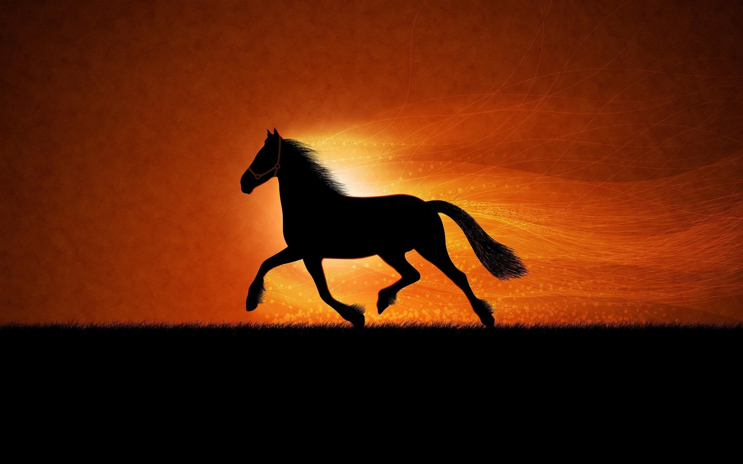 Horse Sunrise Art