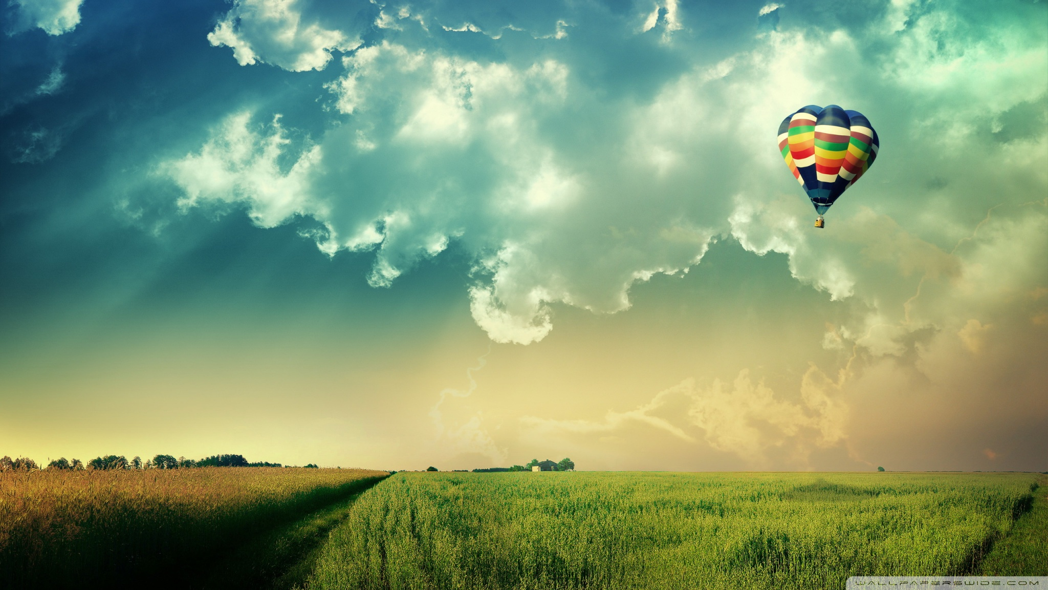 Hot Air Balloon Hd Wallpaper 2048x1152 8652