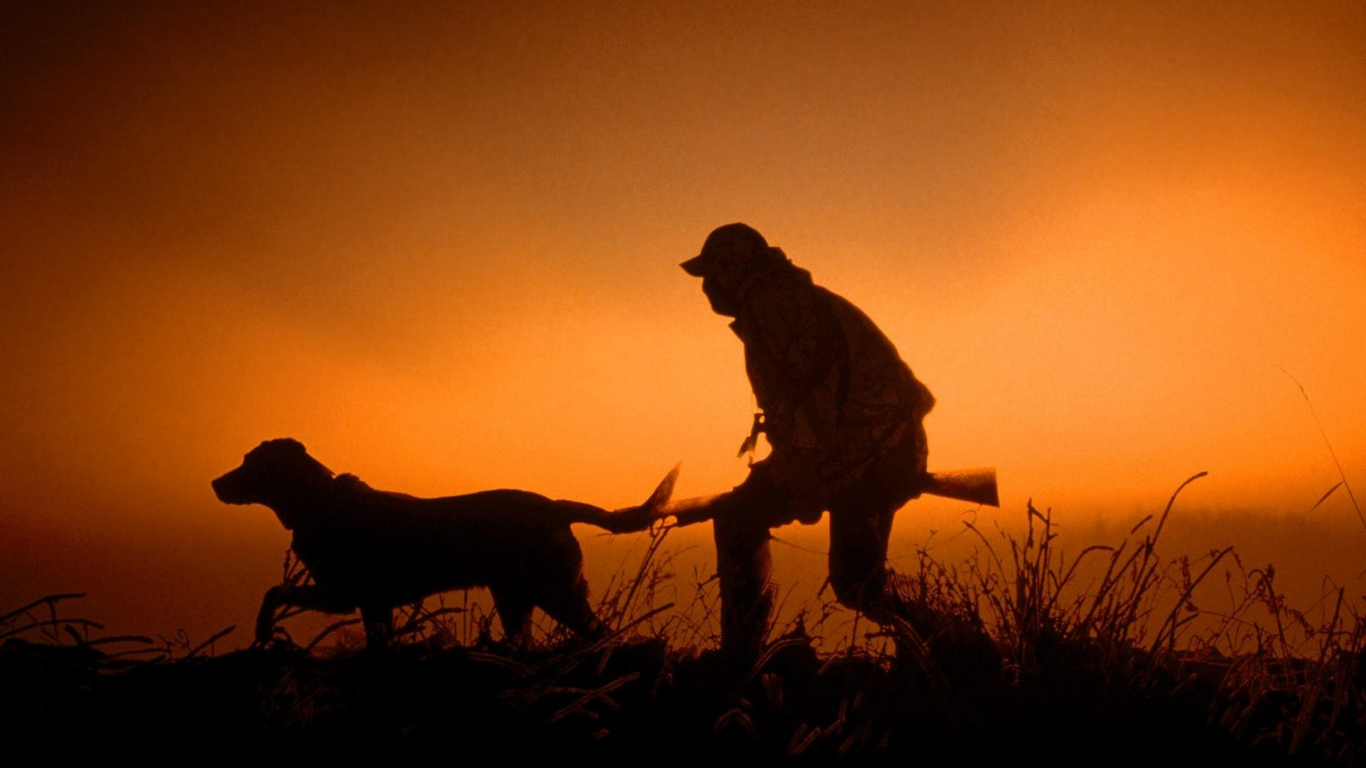 sunset guns dawn hunter silhouettes dogs dusk hunting wallpaper background
