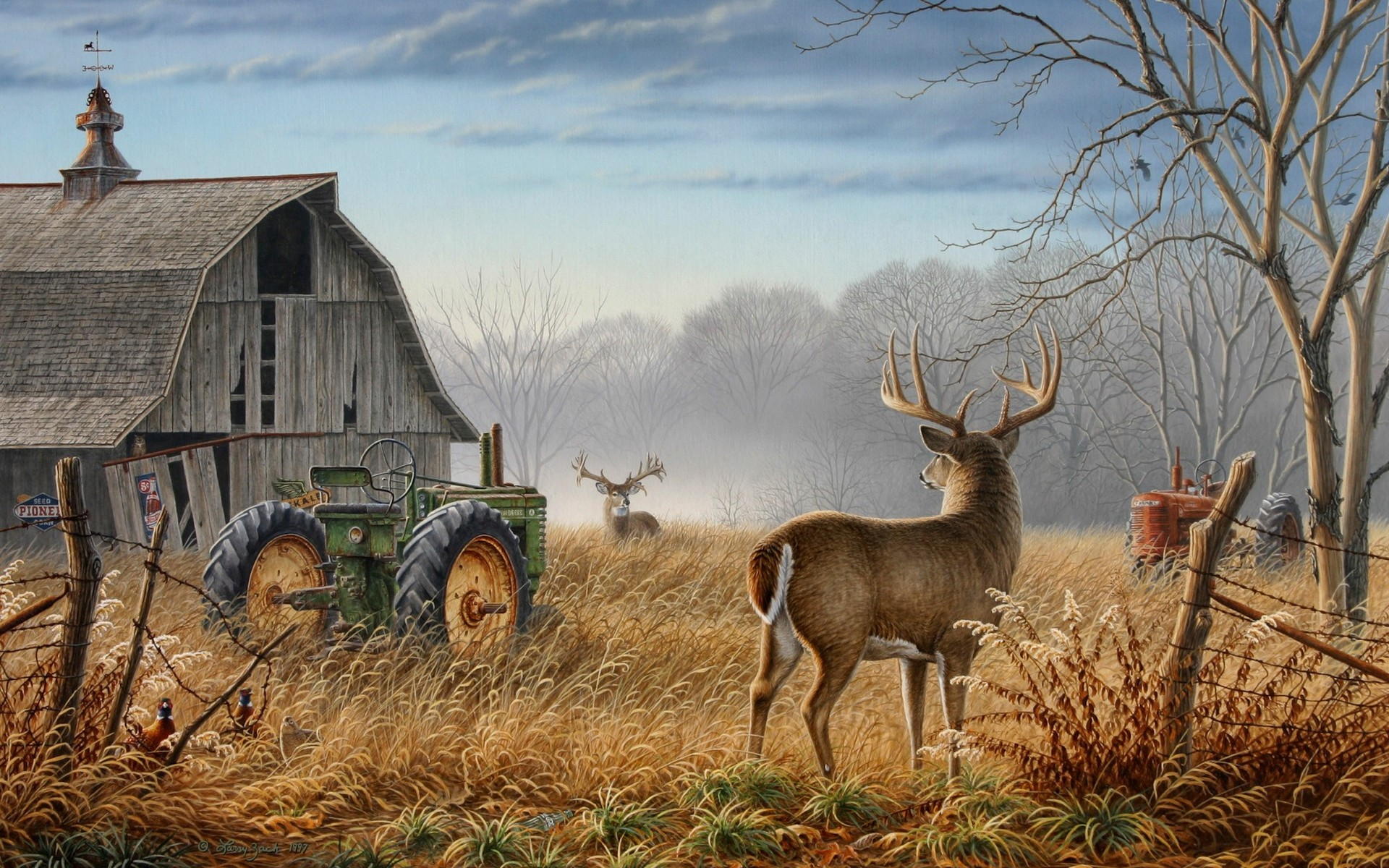 deer hunting background