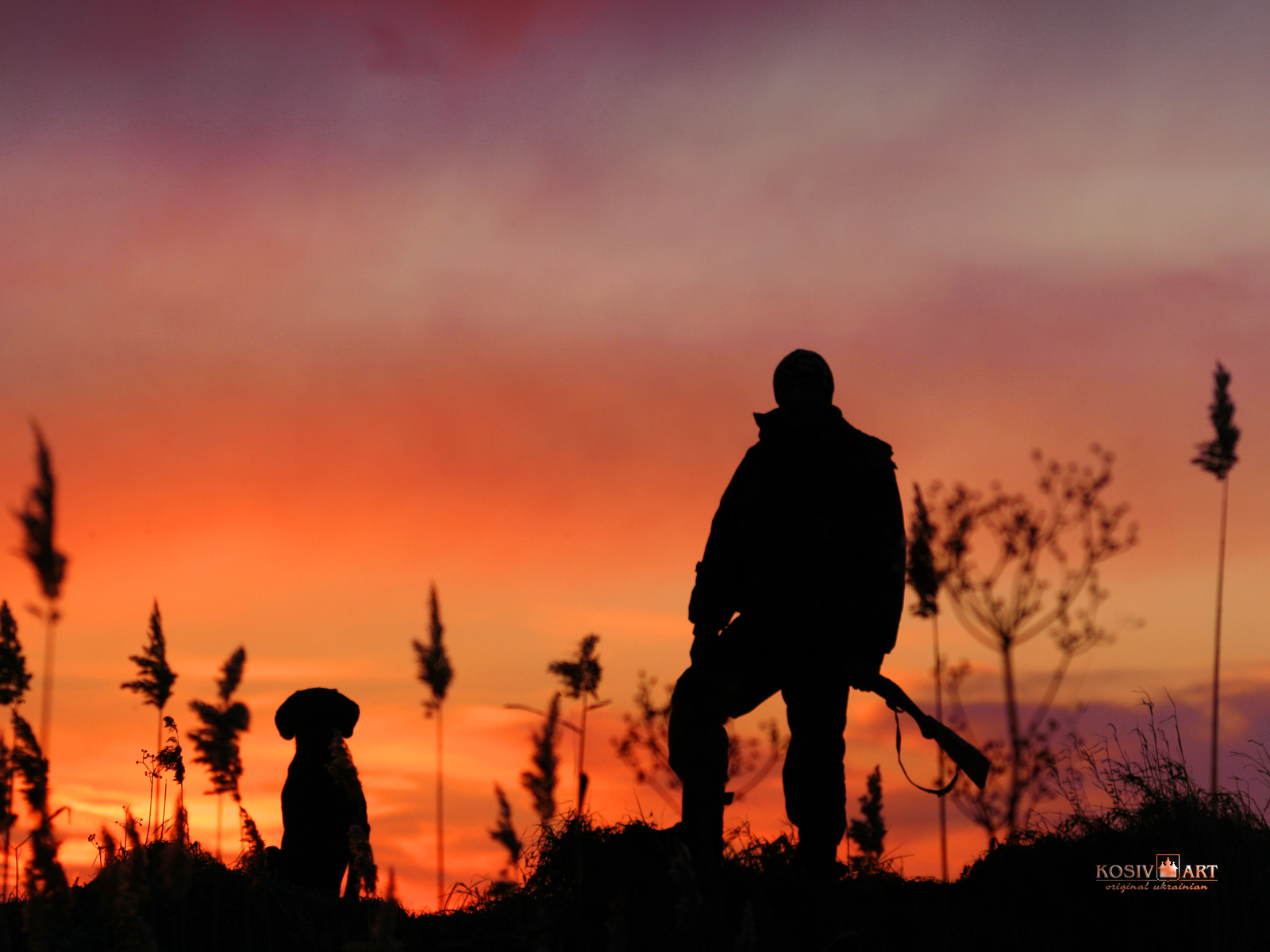 Image for Hd Duck Hunting Wallpapers