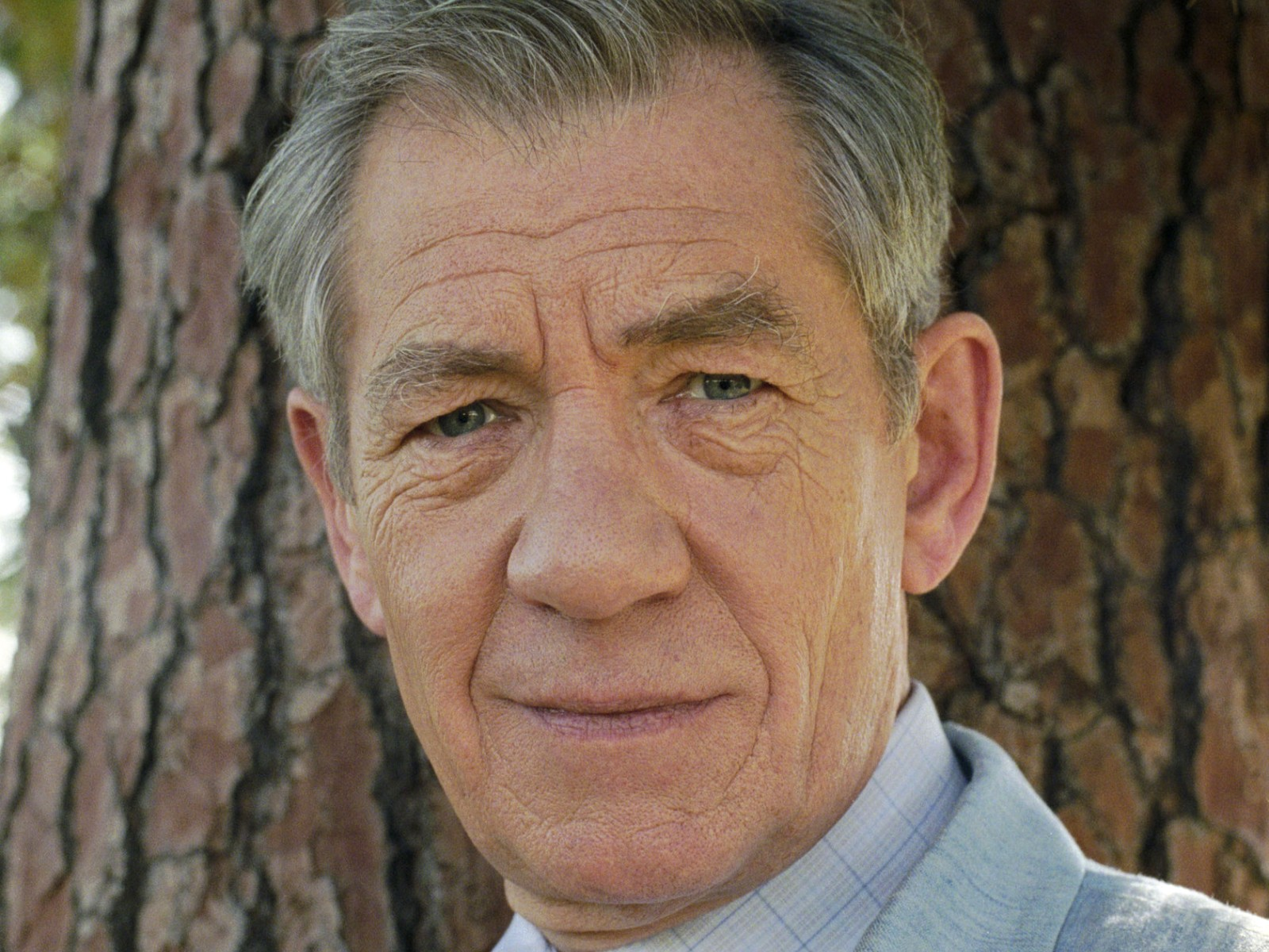 Celebrity - Ian McKellen Ian Mckellen Wallpaper