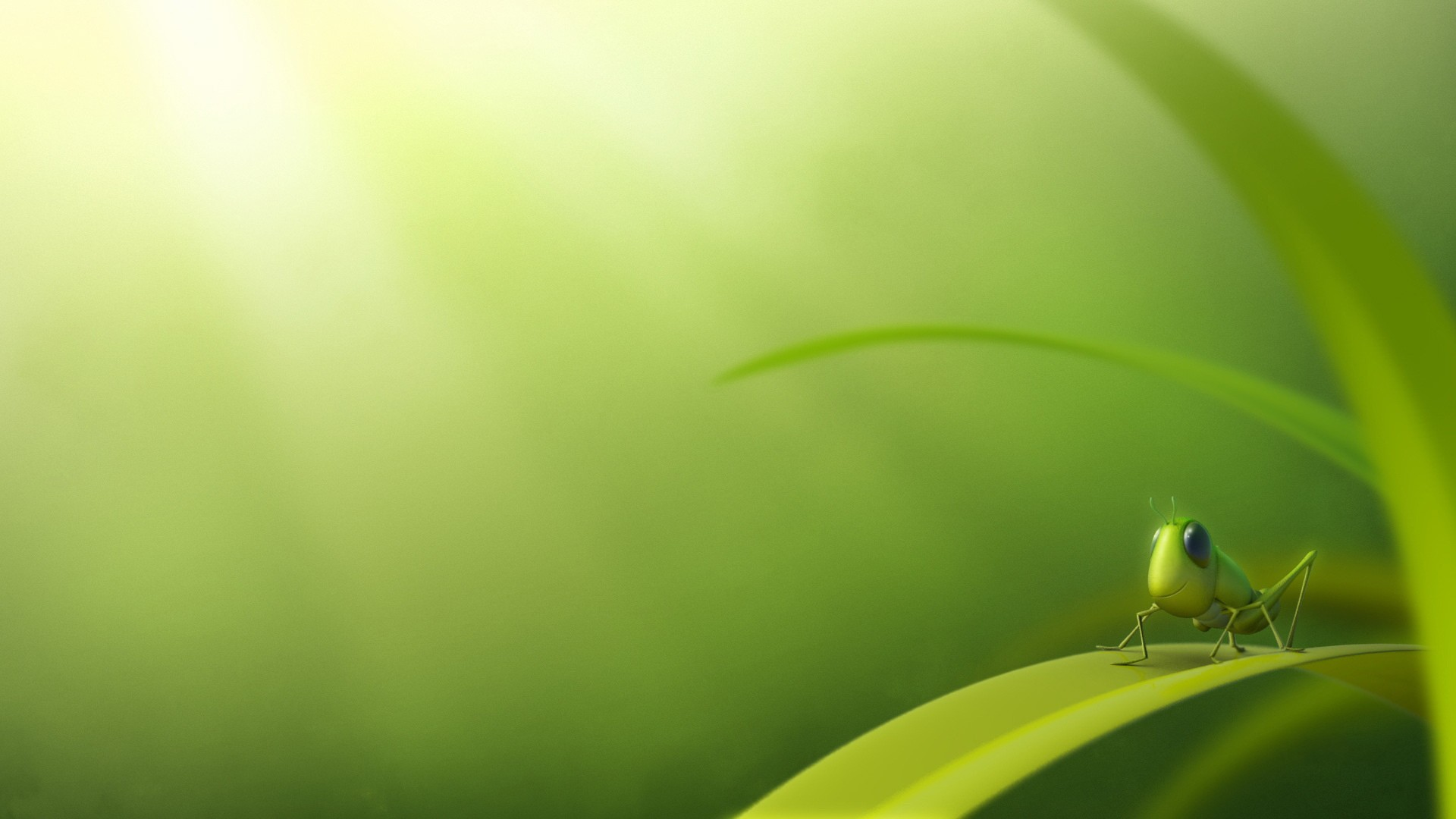 Insects Background