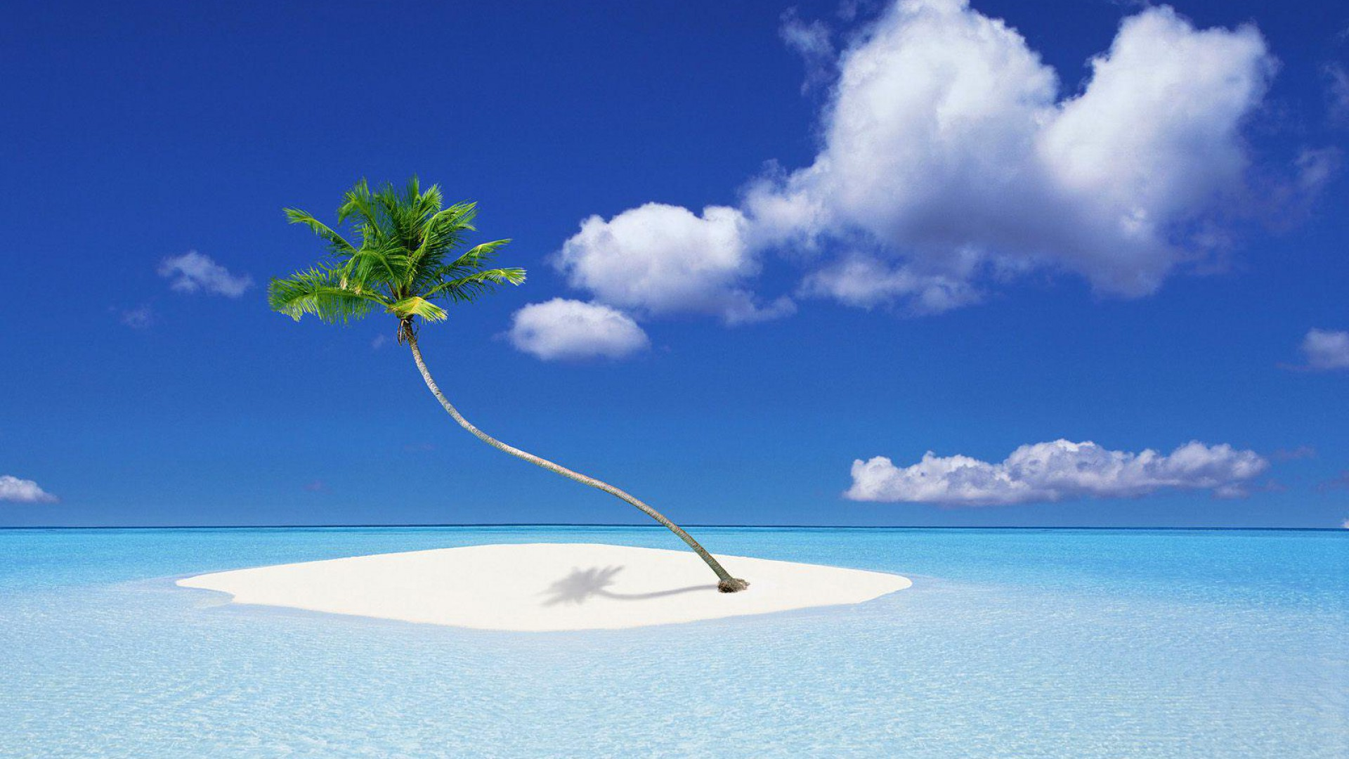 Remarkable Beach Small Palm Island Wallpaper 1920x1080px