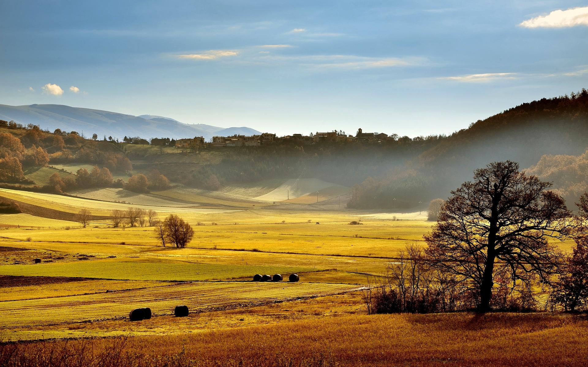 Italy summer landscape