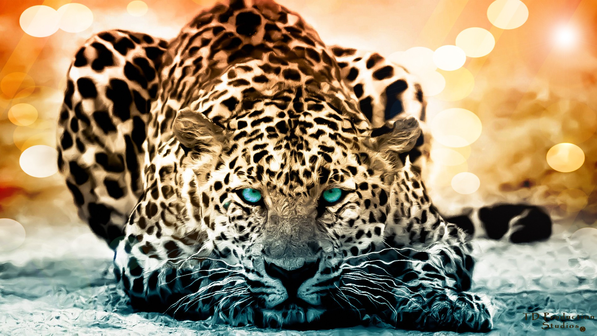 1920x1080 Animal Jaguar