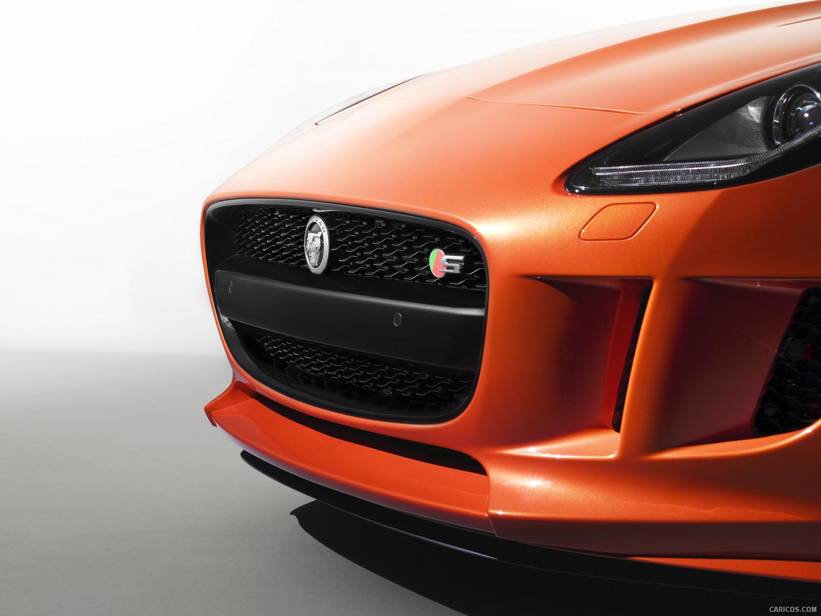 2014 Jaguar F-TYPE - Grill Wallpaper