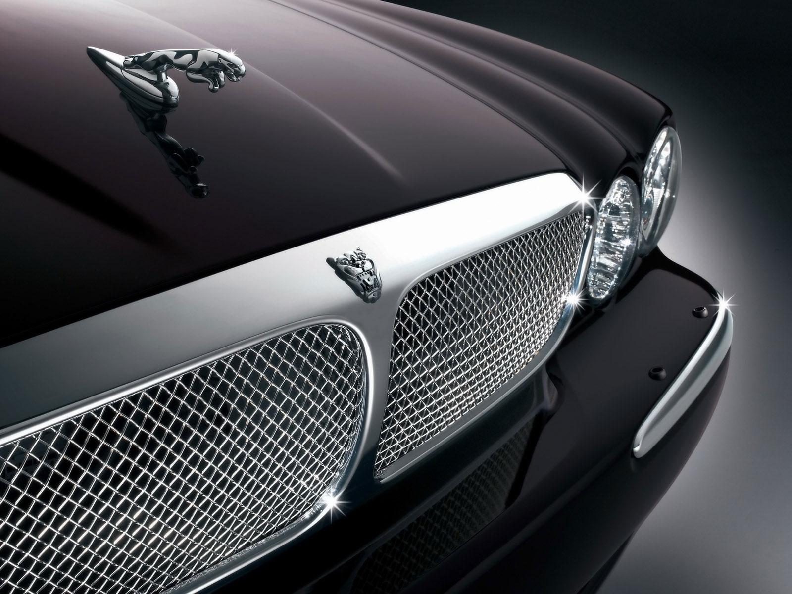 Jaguar Logo Up Close Wallpaper