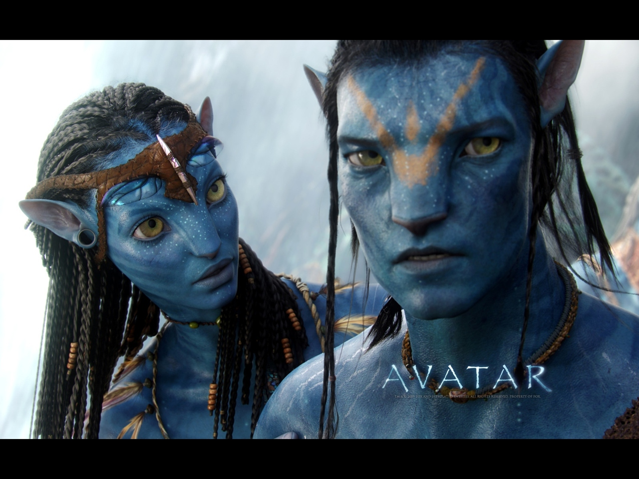 "James Cameron's ""Avatar"" desktop wallpaper number 4 (1280 x 960 ..."