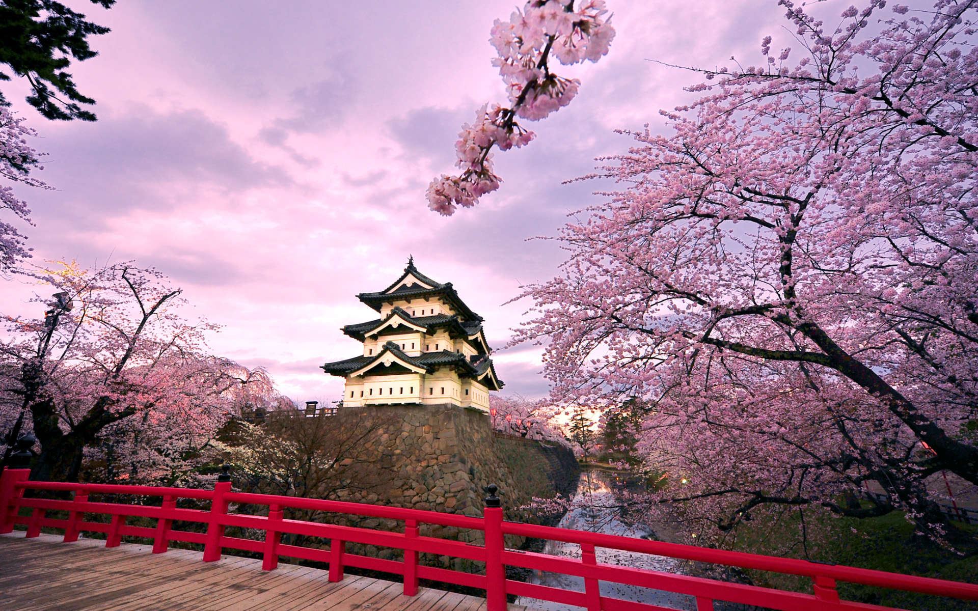 Japan Castle Wallpaper Sakura HD