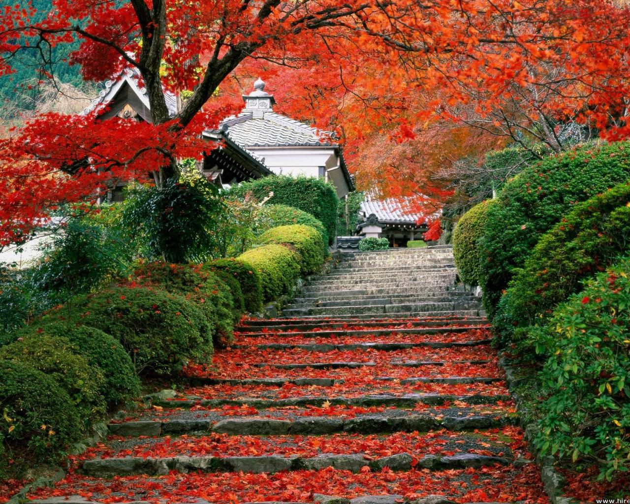 Wallpaper Tags: autumn stairways japanese garden stairs