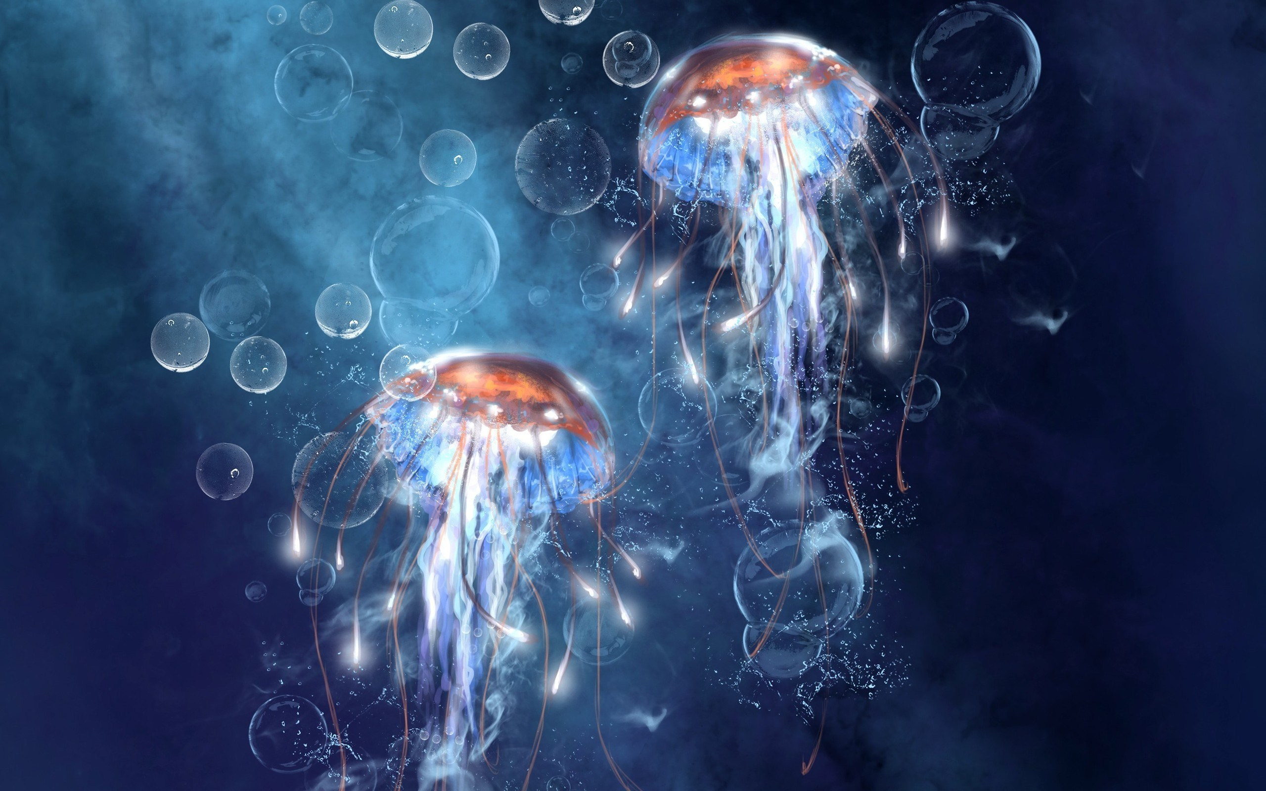 Sea Underwater Jellyfish Bubbles Art