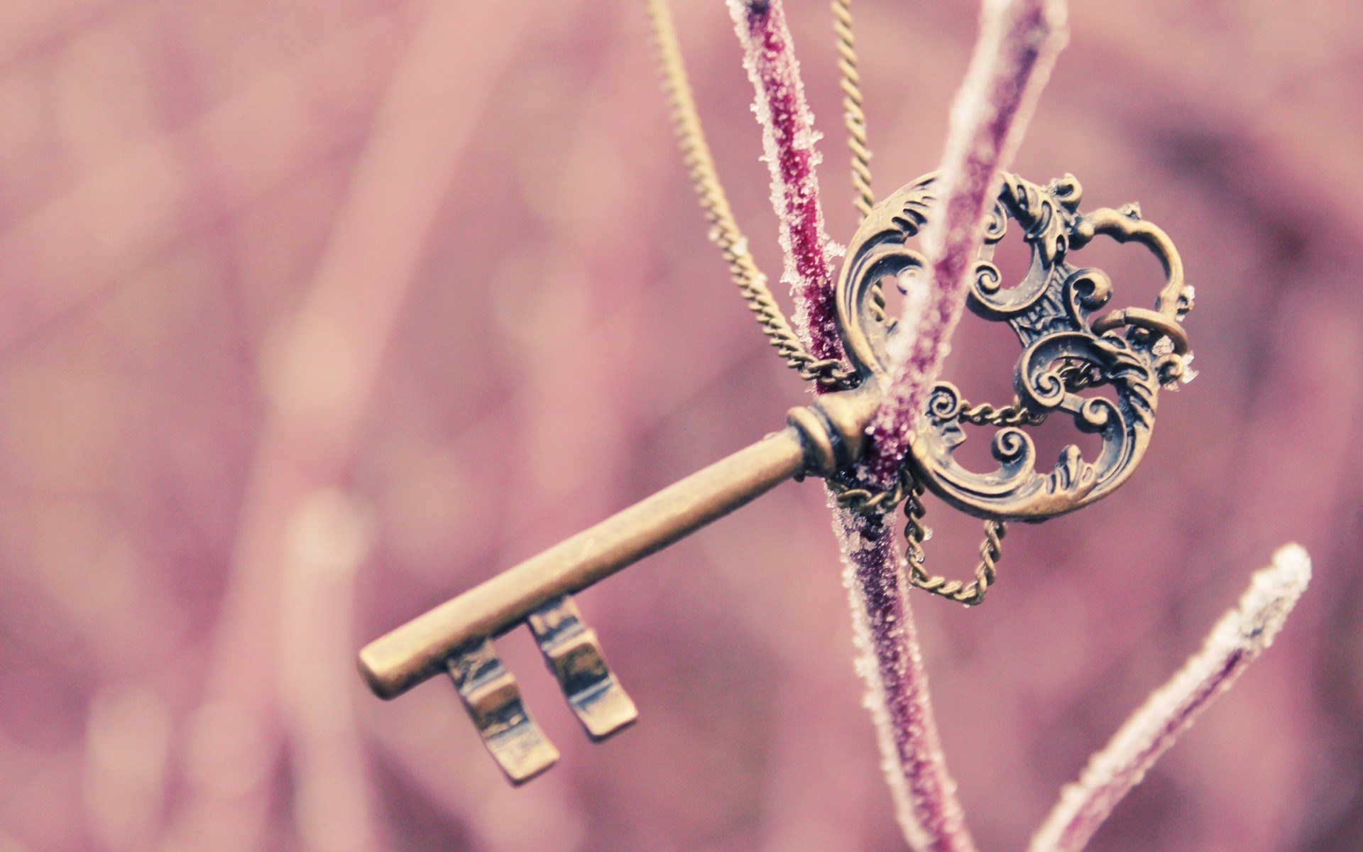 Frozen Twig Key Necklace HD Wallpaper