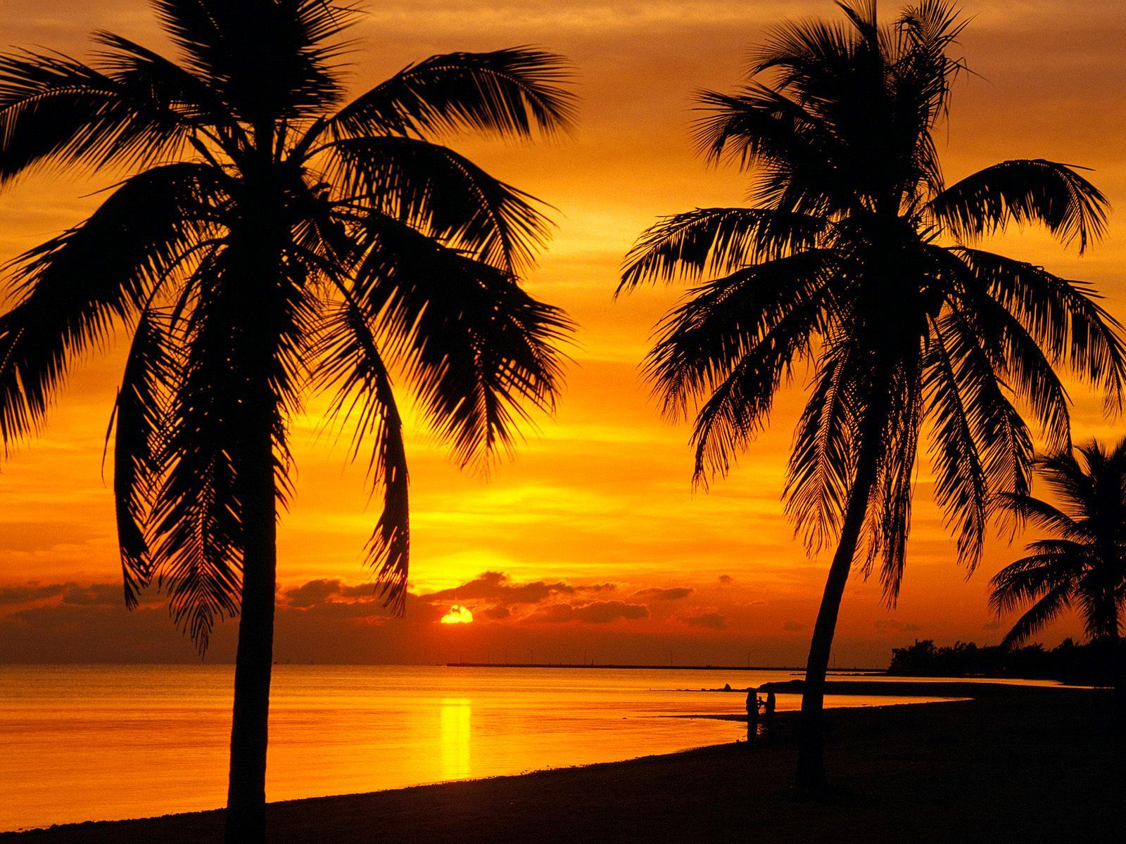 Views: 3173 Key West 9015