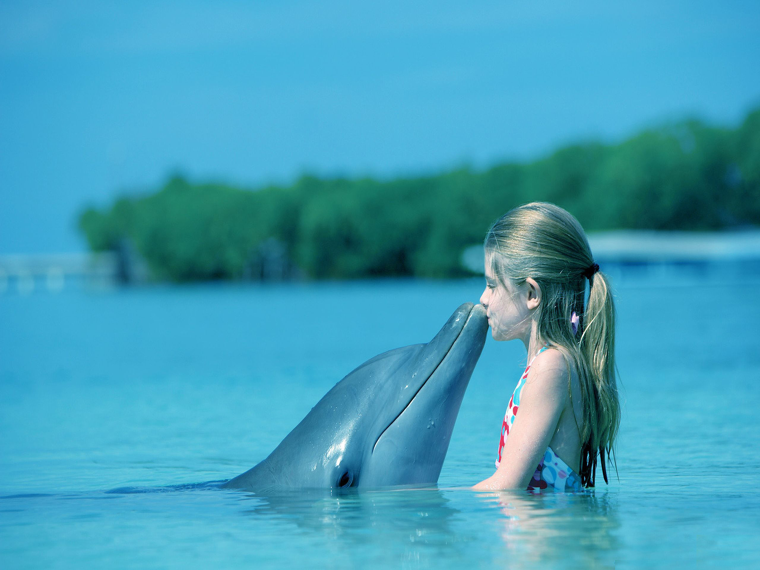 Kid Dolphin Kiss