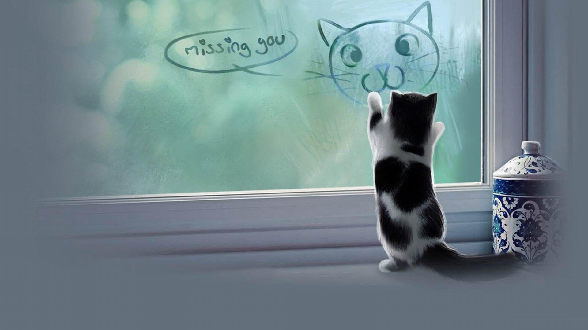 Kitten Mood