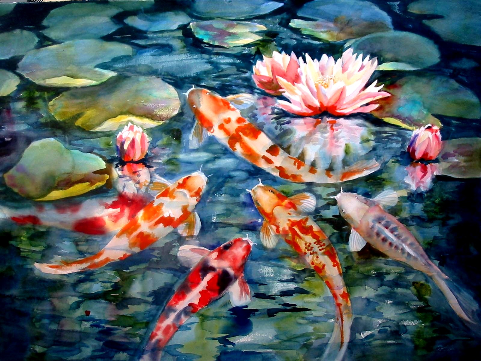 Koi Fish HD Wallpaper