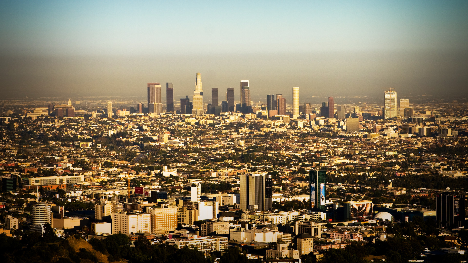 LA Wallpaper