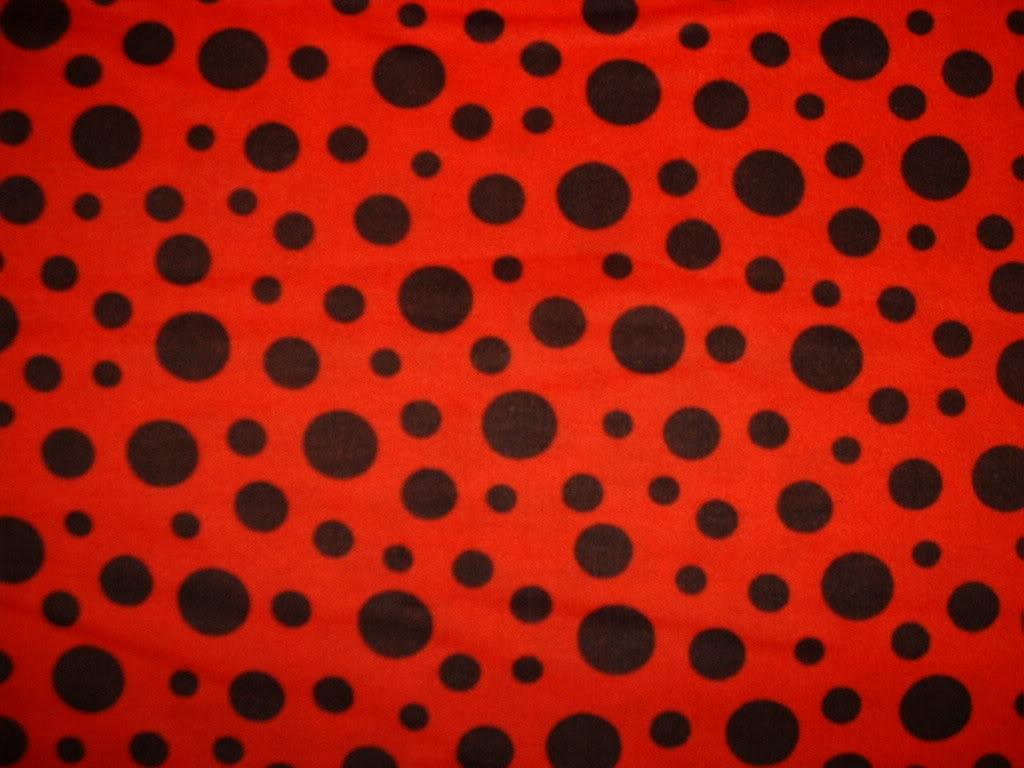 Ladybug Spots