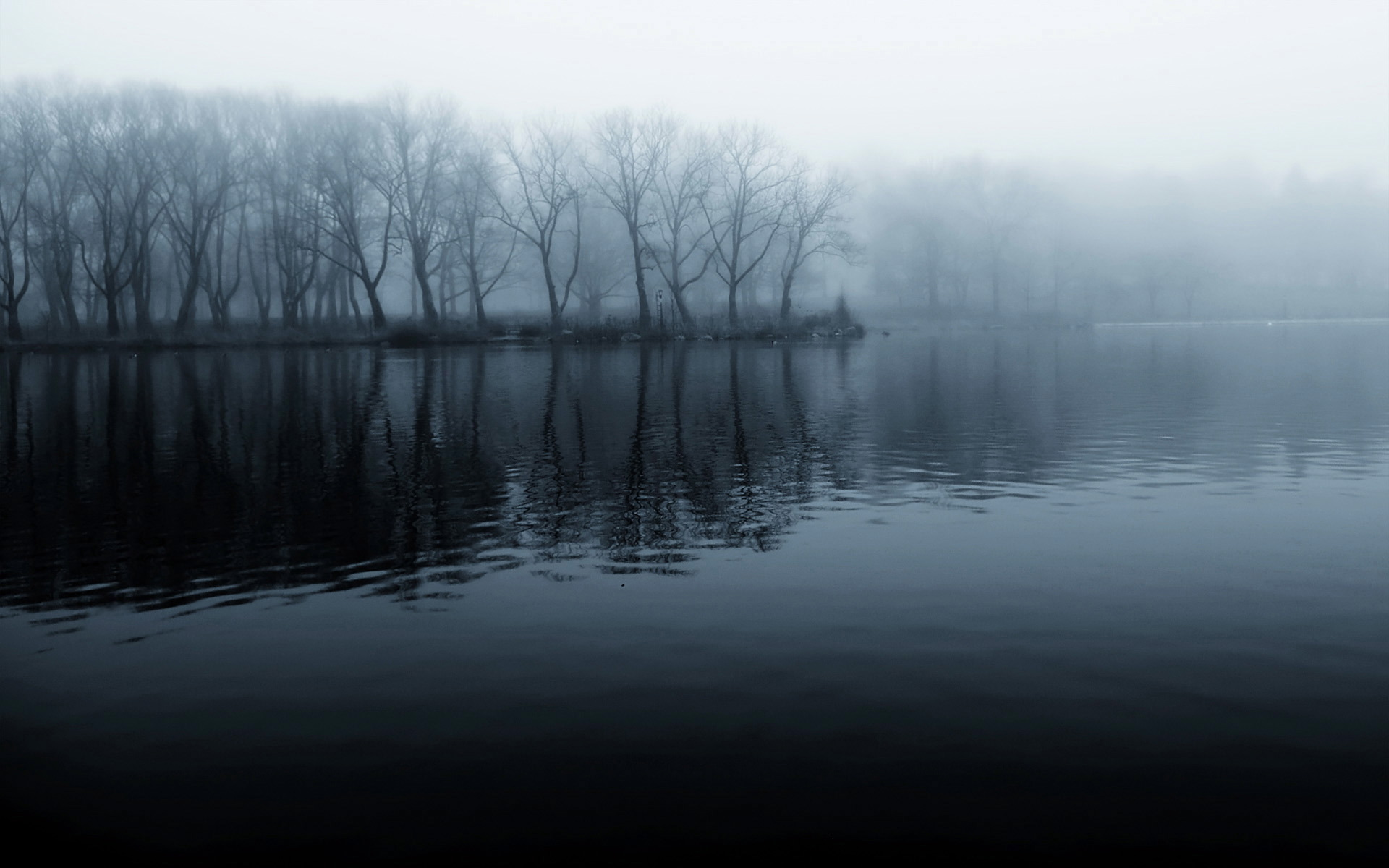 Lake Mist Pictures 33777 1920x1200 px