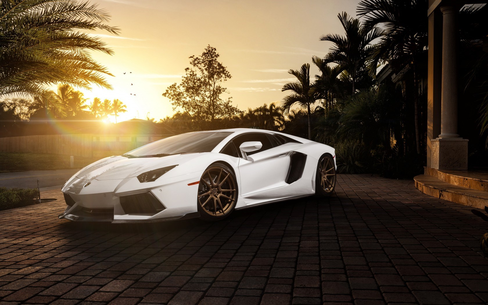 Lamborghini Aventador White Car Tuning Parking