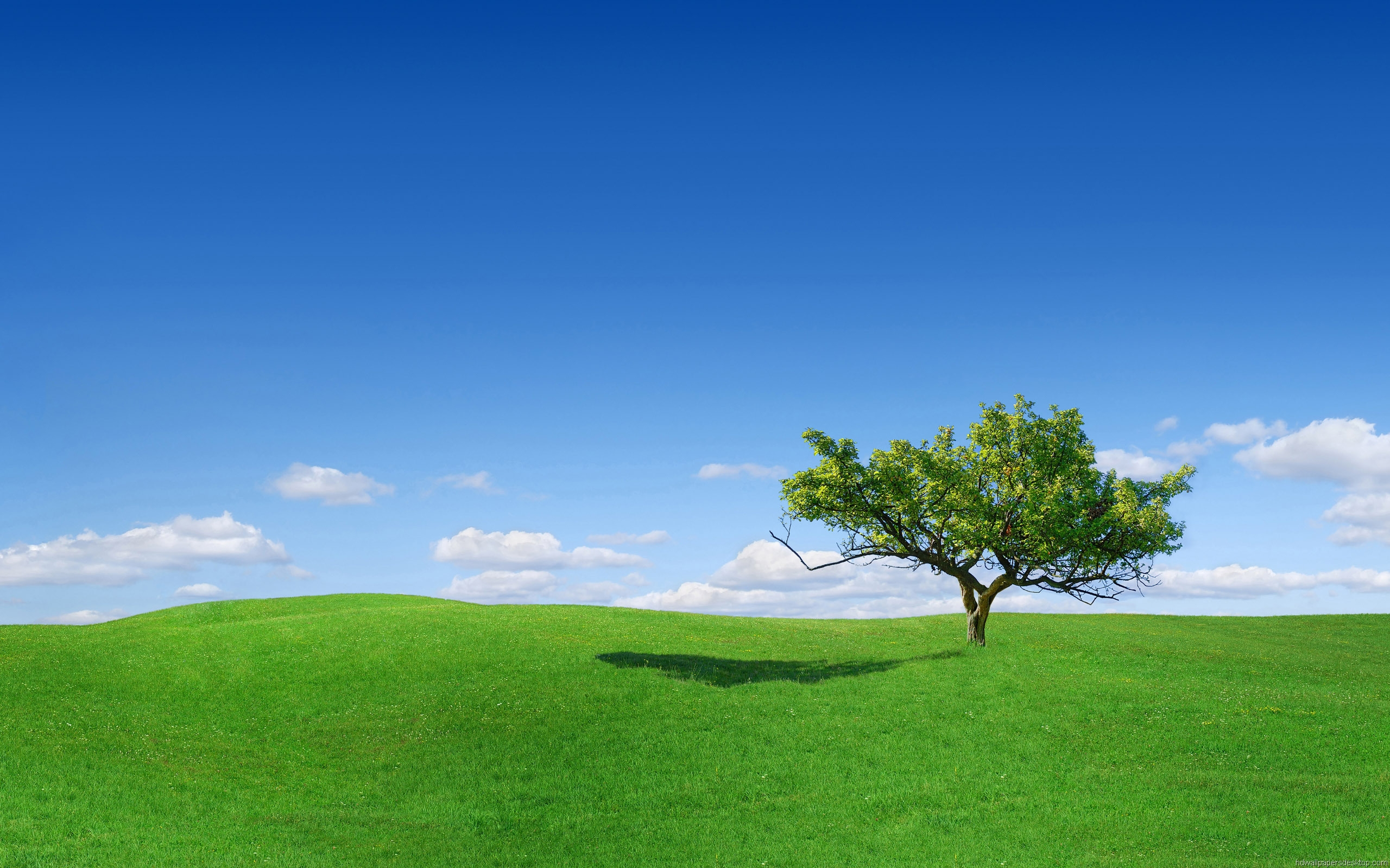 green landscape nature best wallpapers new fresh desktop landscape images widescreen