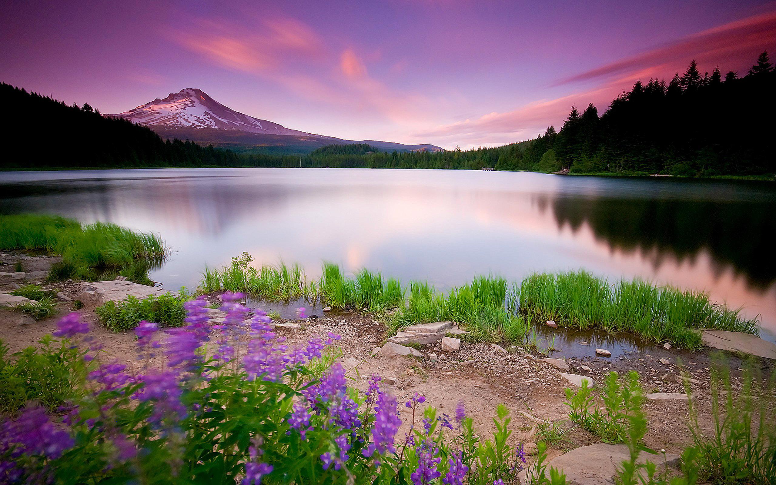 Landscape Photos