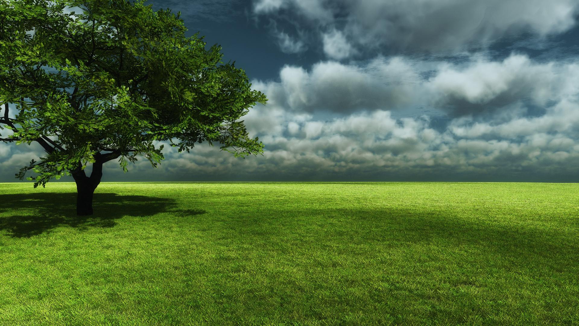 Green Landscape Wallpapers