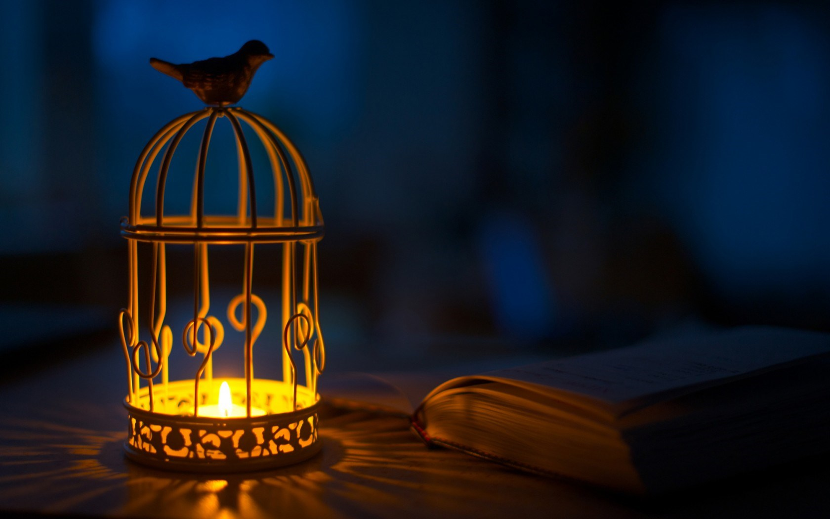 Lantern Bird Candle Shadows Light Book