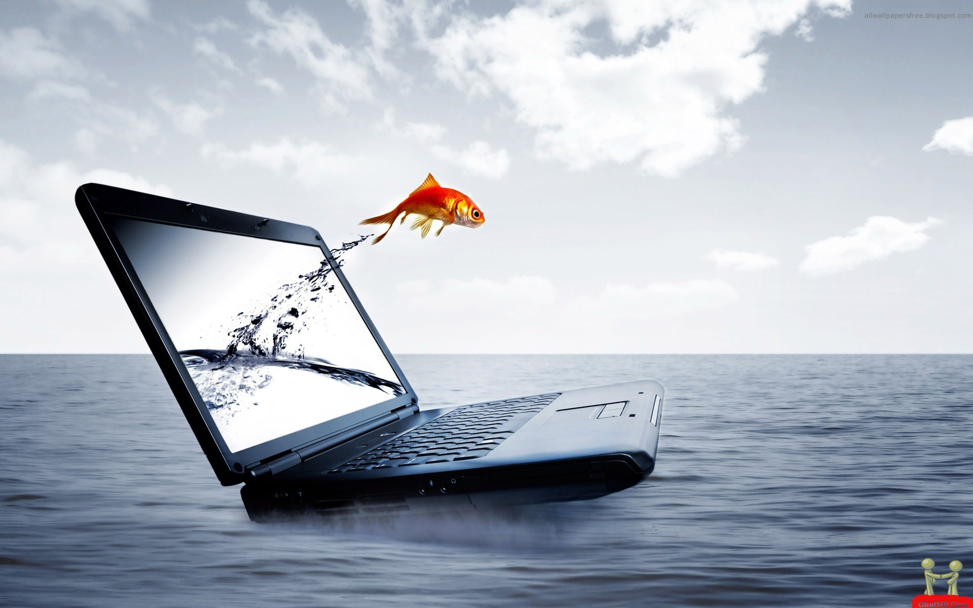 Wallpapers Dell Laptop Nature Cartoon Pictures Military Lagoon