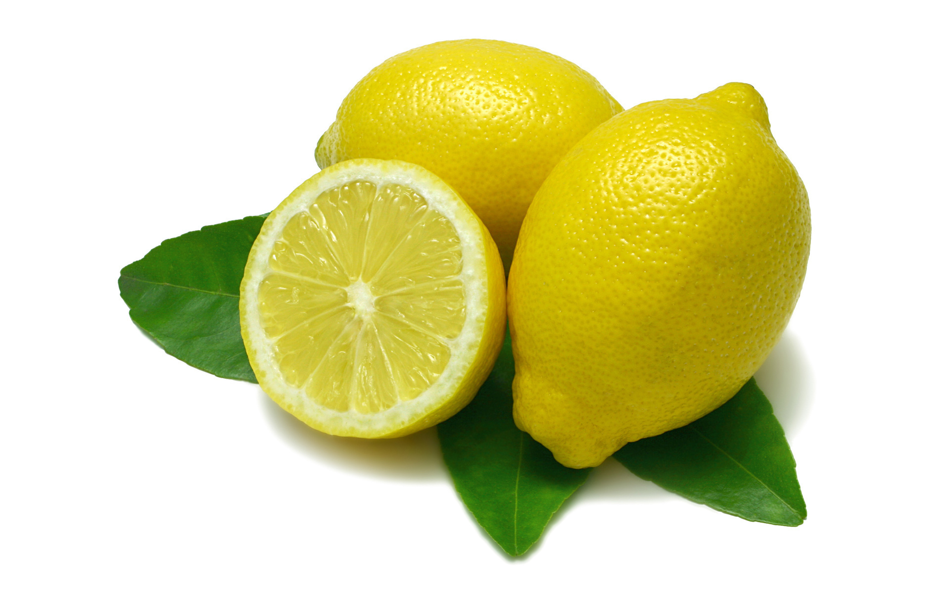 Lemon wallpaper | 1920x1200 | #67013