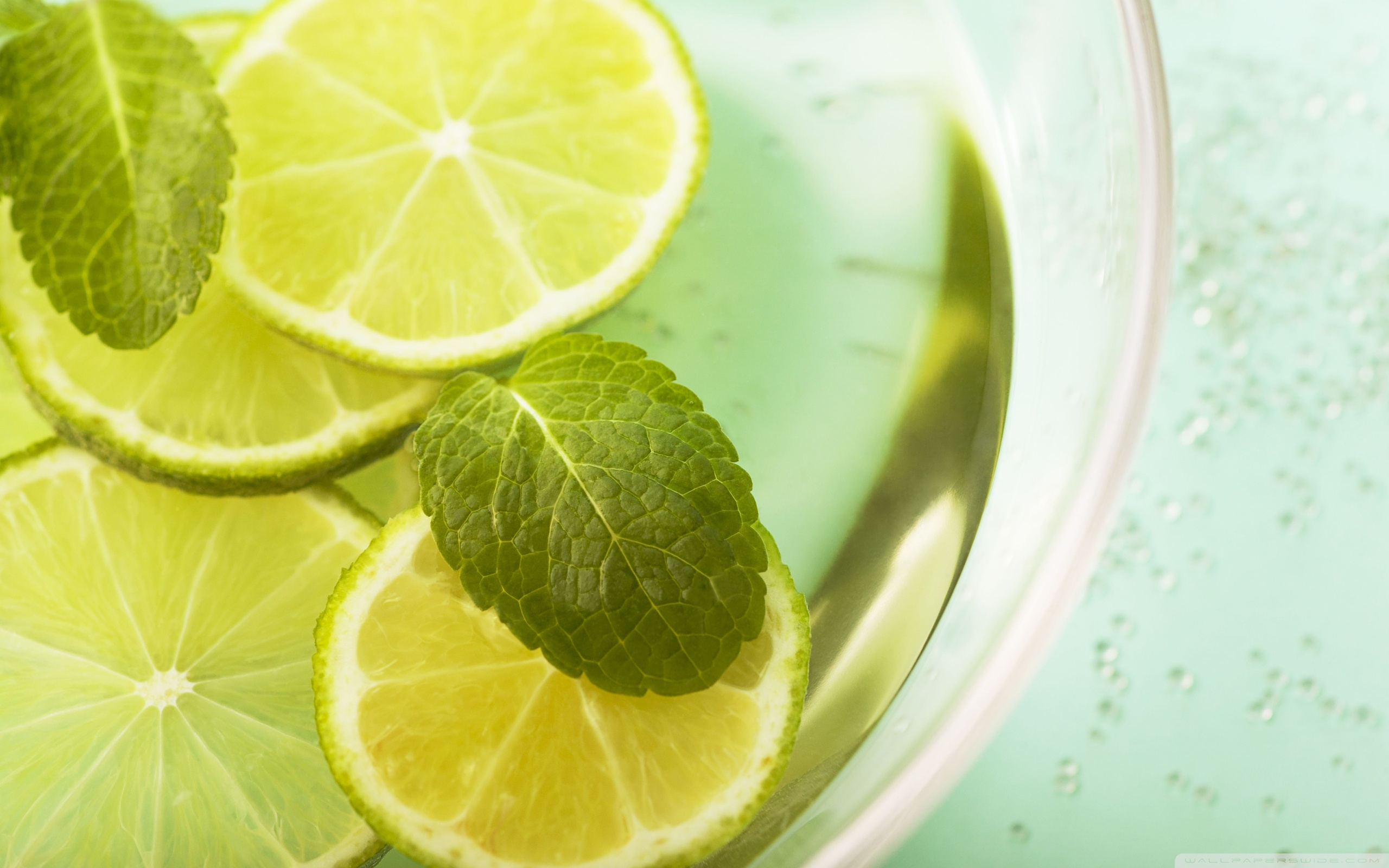 Lemon And Mint HD Wide Wallpaper for Widescreen