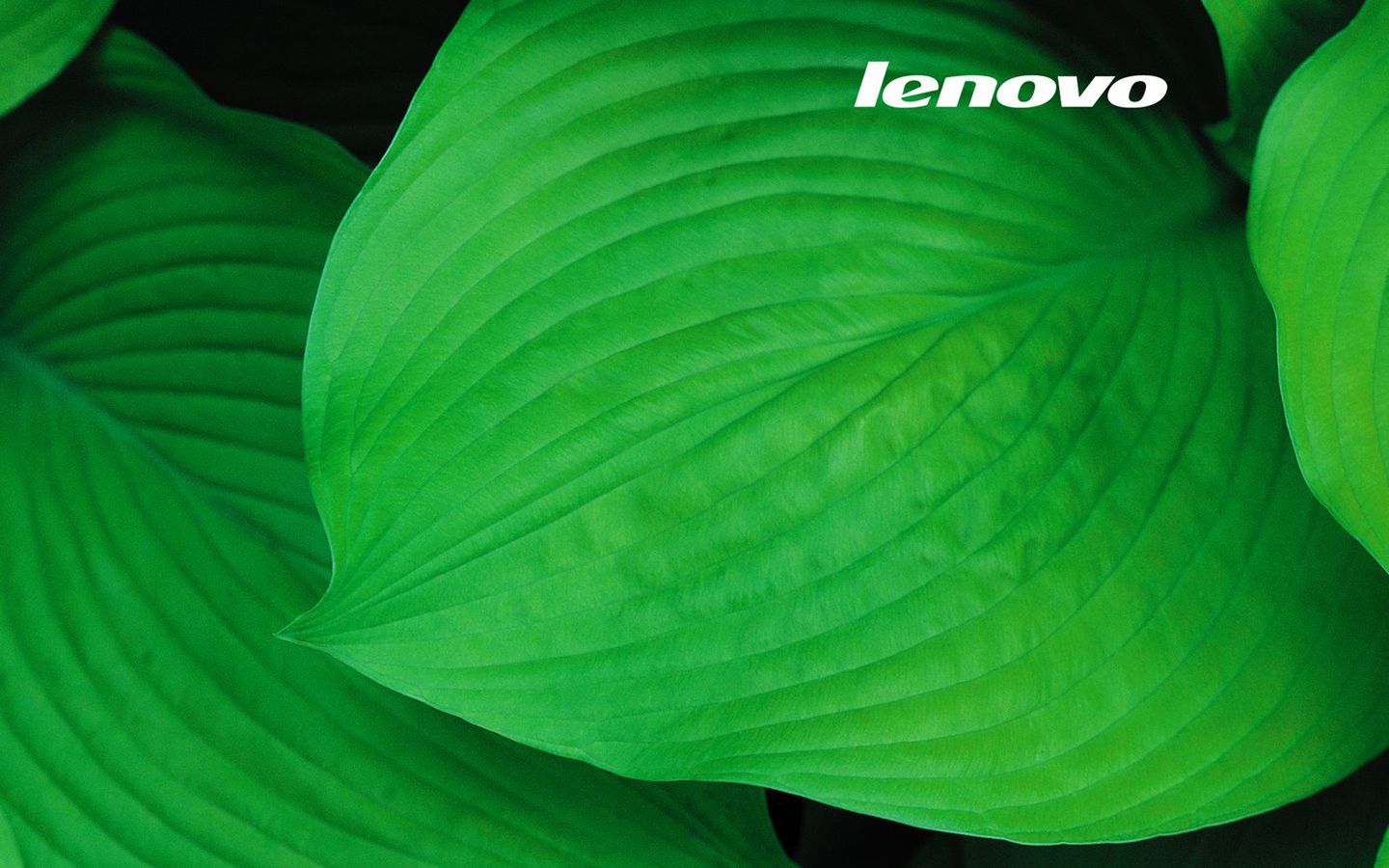 Lenovo Wallpaper
