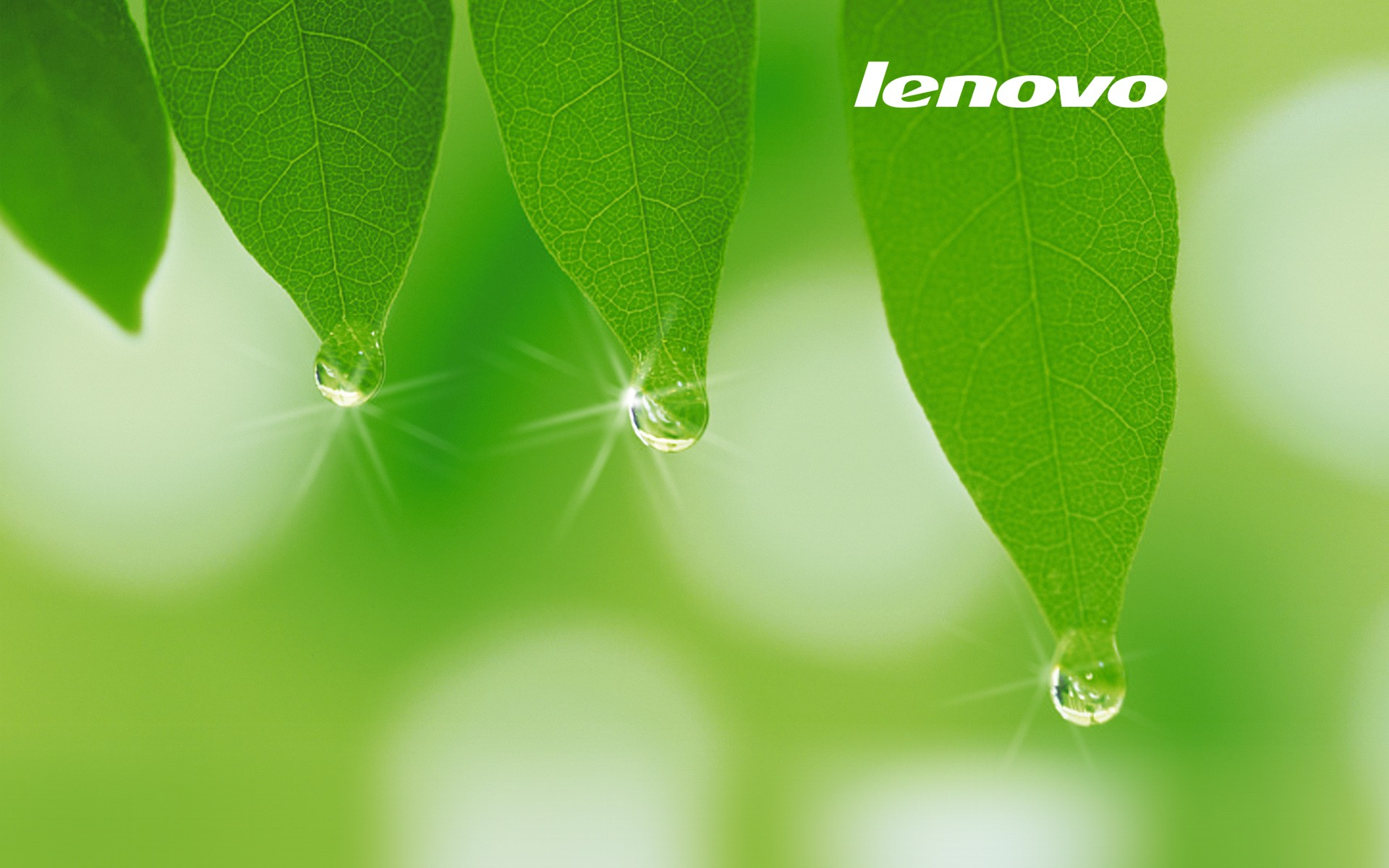 Free Lenovo Wallpaper