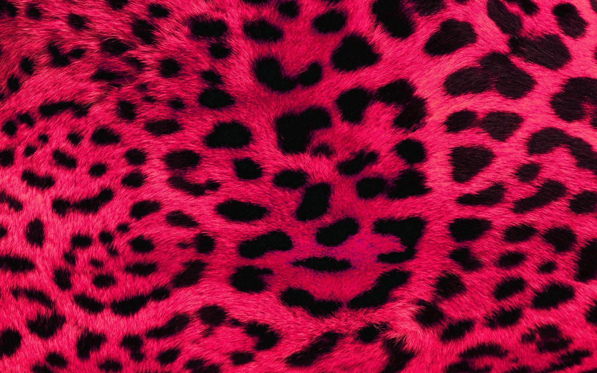 Pink Leopard Print Free Desktop Wallpaper