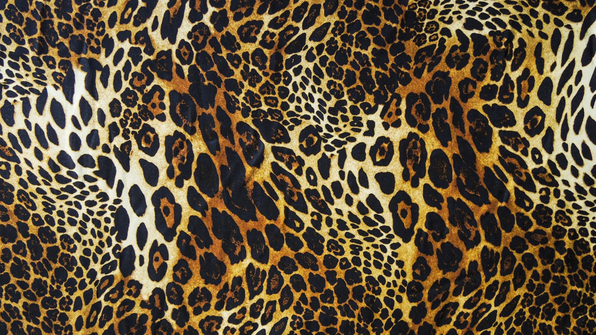 original wallpaper download: Bright leopard - 1920x1080