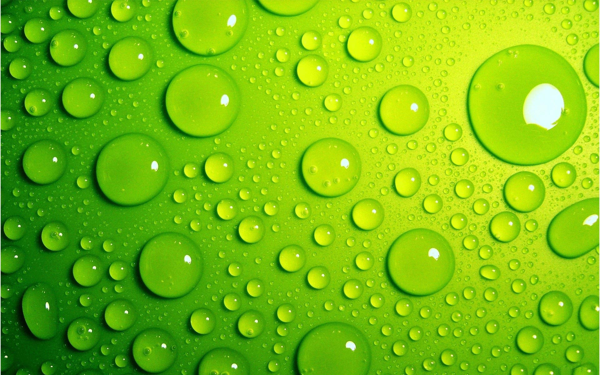light green droplets abstract wallpaper Wallpaper