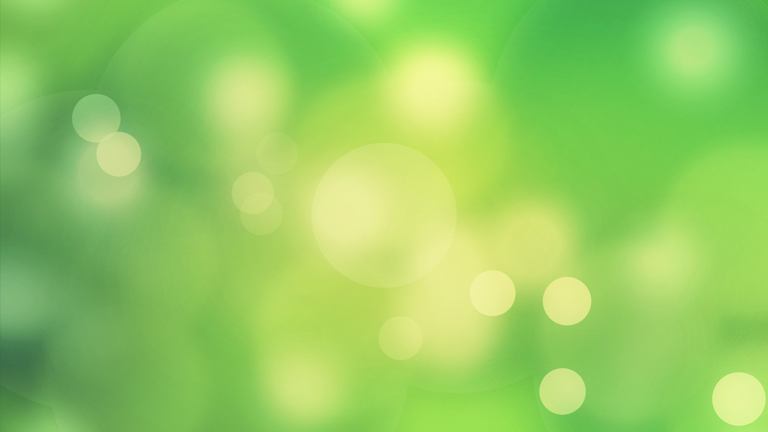 "Download the following Wonderful Light Green Wallpaper 2654 by clicking the button positioned underneath the ""Download Wallpaper"" section."