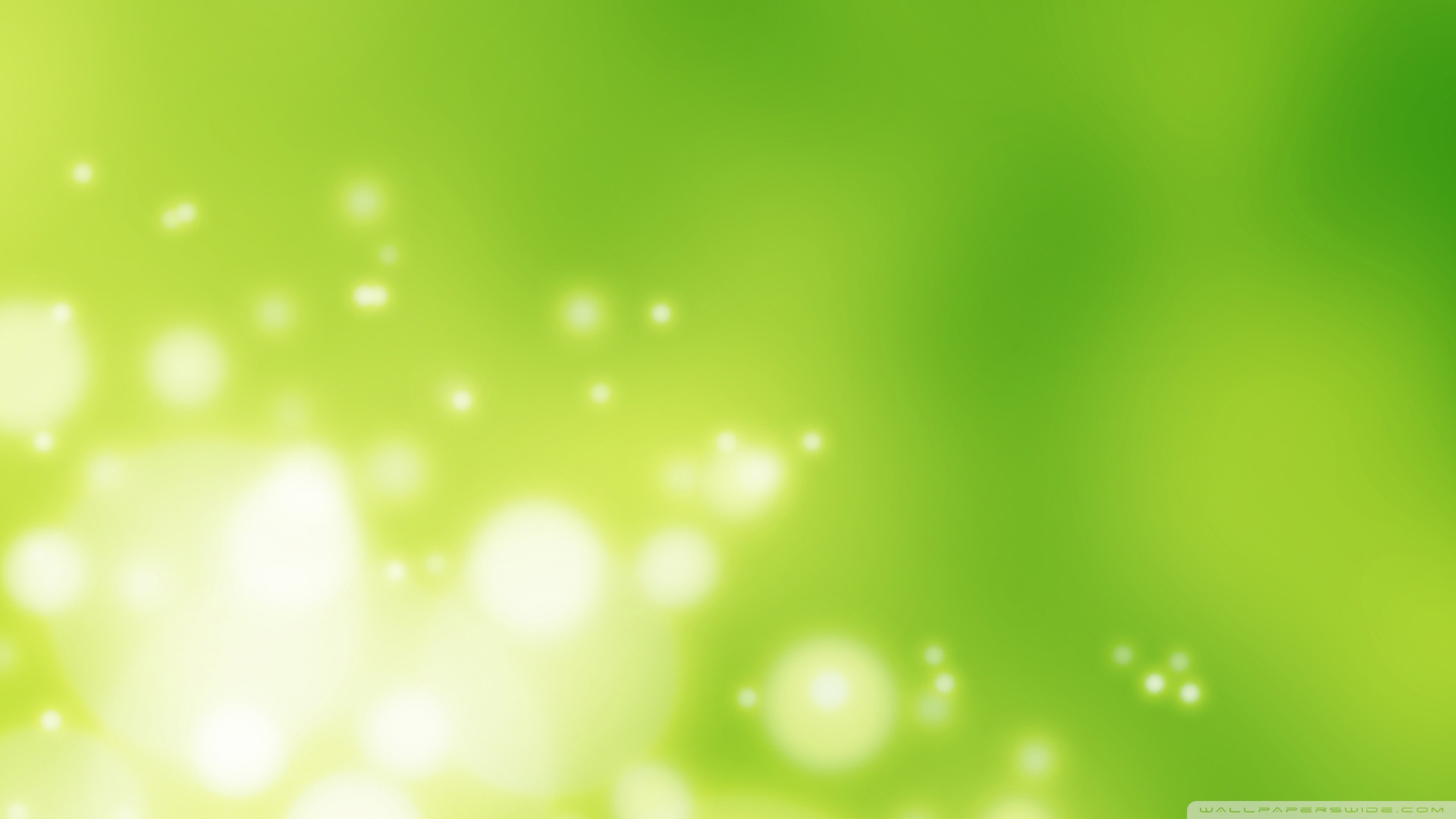 Light Green Wallpaper