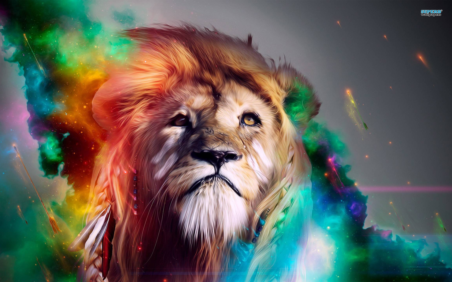 Lion wallpaper | 1920x1200 | #35555