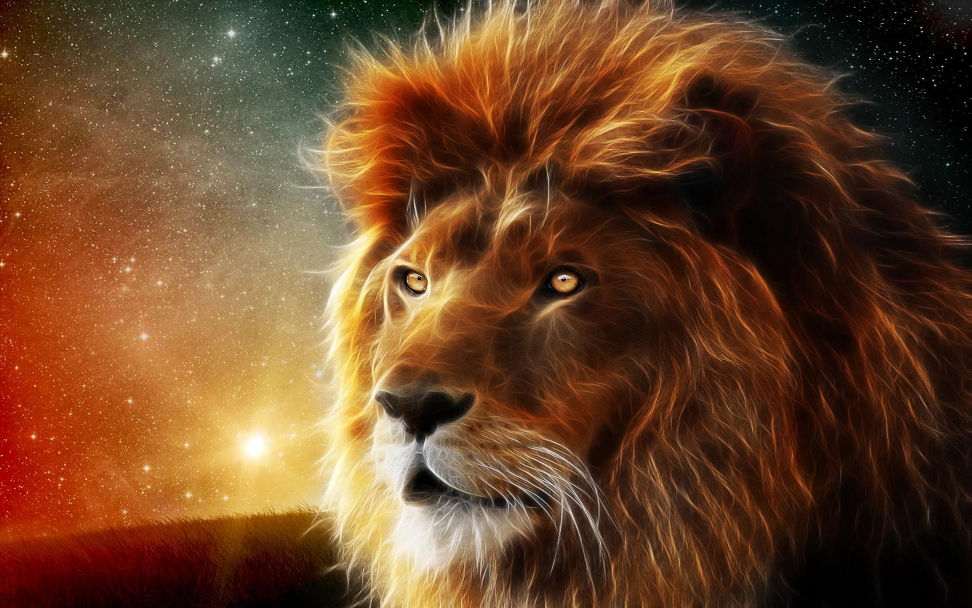 1920 x 1200 - 1013k - jpg 8868 Lion Wallpaper Hd ...