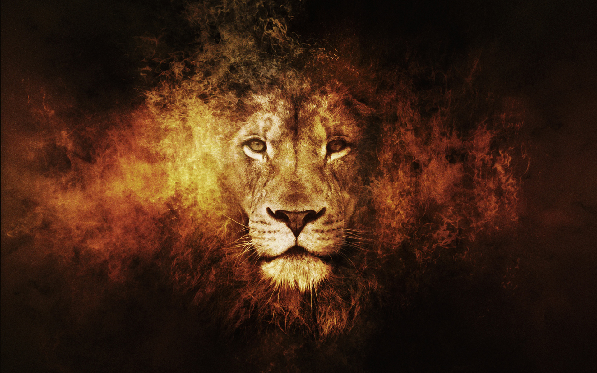 Lion fire art