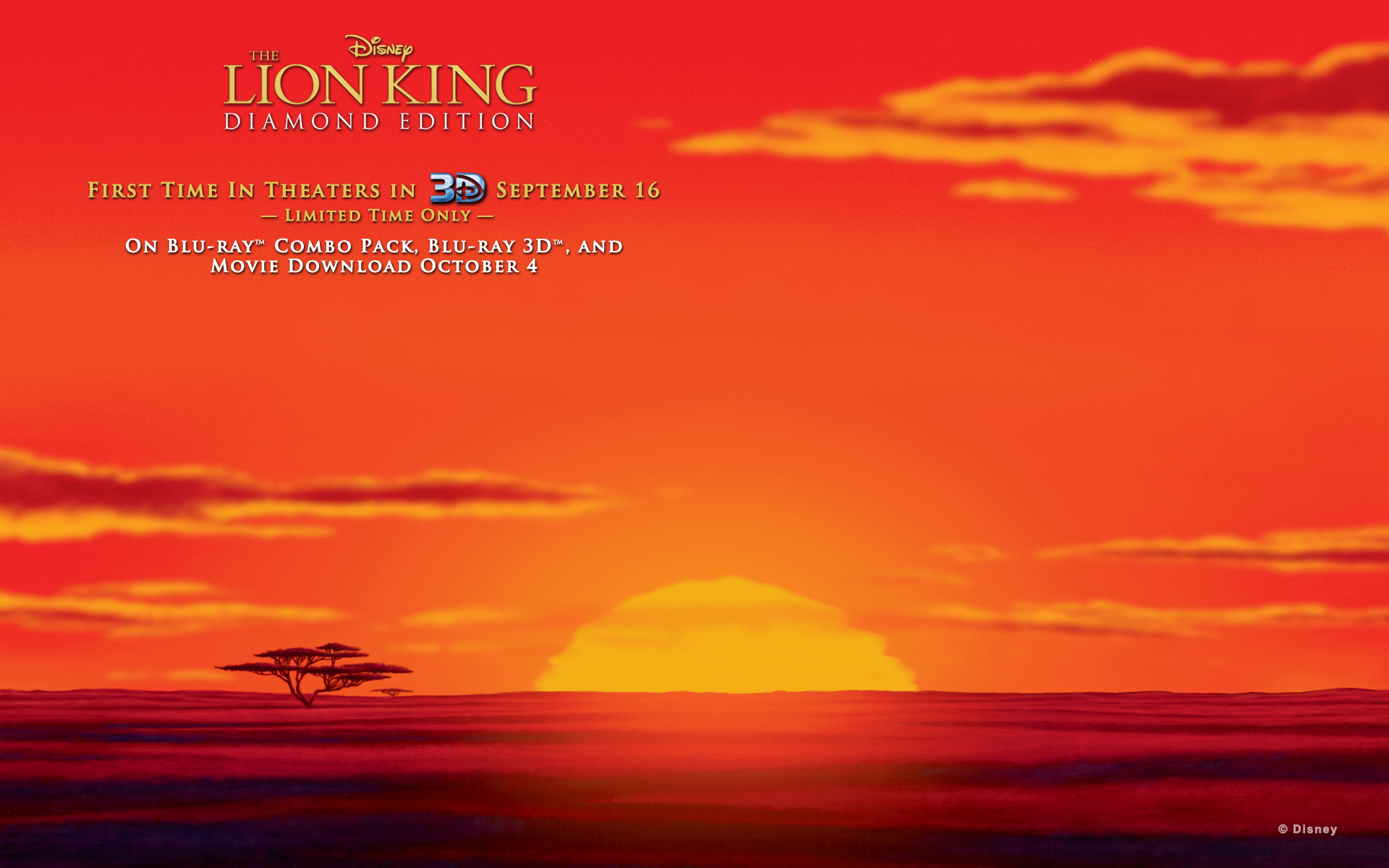 lion king wallpaper | 1920x1200 | #39057