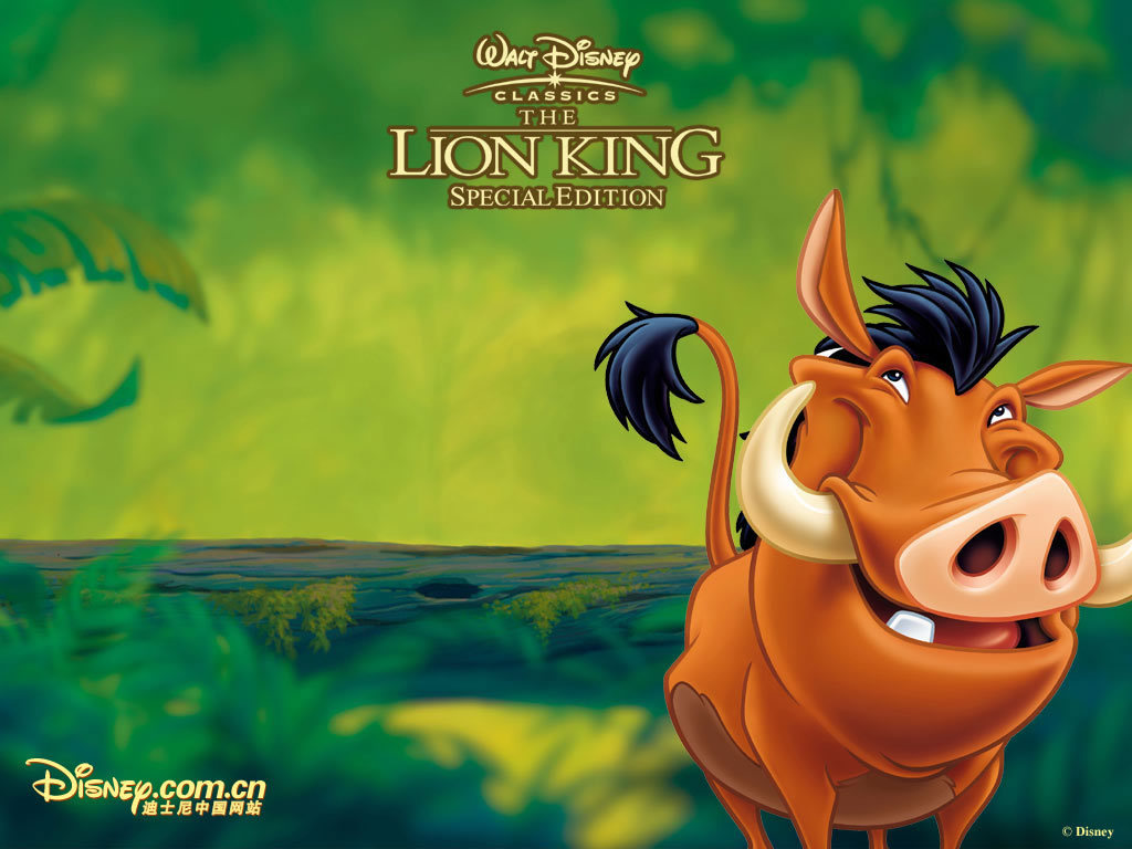lion king wallpaper | 1024x768 | #39051