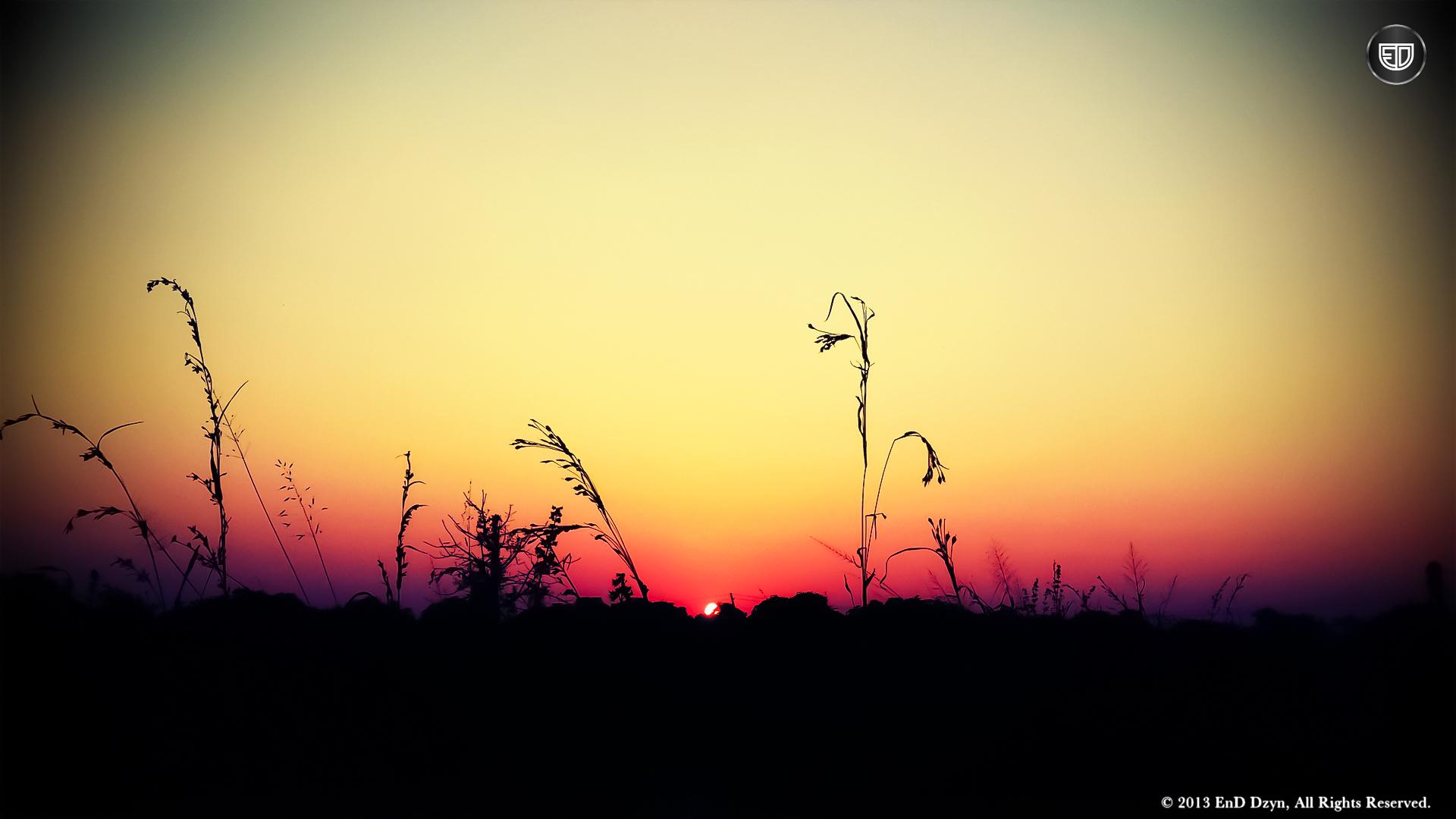 Lomography HD Wallpaper Background – Beautiful Vivid Sunset