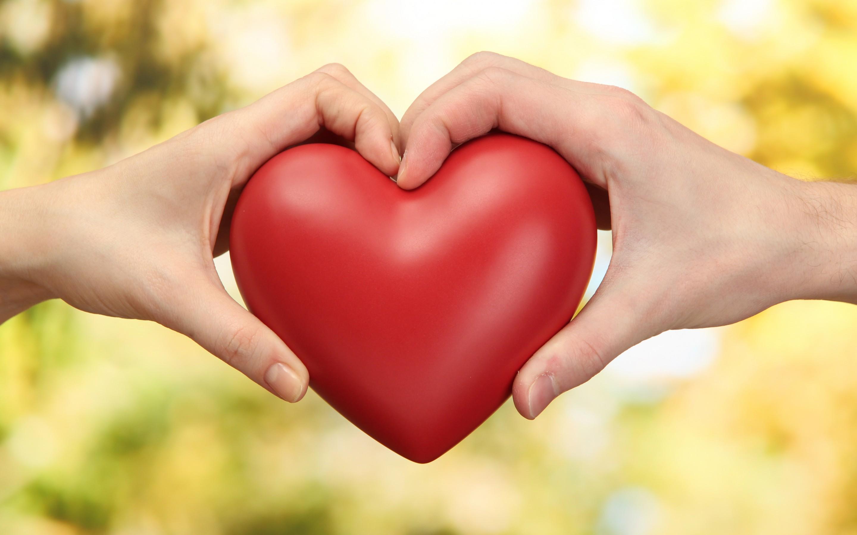 Heart-in-Hands-Love-Wallpaper-HD-Skilal-25277
